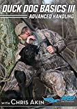 Avery DVD - Duck Dog Basics 3