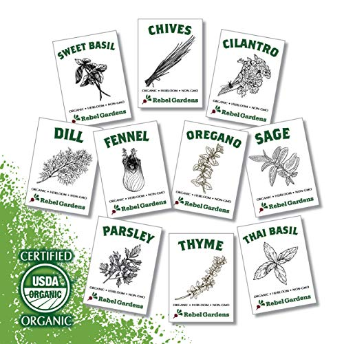 Rebel Gardens Organic Herb Seeds - USA Grown Non GMO Heirloom Seed for Planting Indoors or Outdoors Garden (10 Culinary Variety Pack)