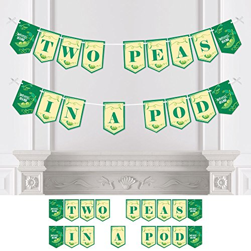 (Big Dot of Happiness Double The Fun - Twins Two Peas in a Pod - Baby Shower Bunting Banner - Party Decorations - Two Peas in A Pod)