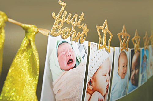 13a4f631afb 1st Birthday Gold Glitter Decorations - Handmade Monthly Milestone Photo  banner for Newborn to 12 months