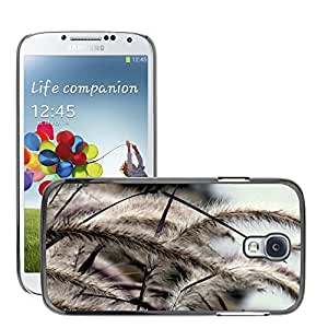 Super Stellar Slim PC Hard Case Cover Skin Armor Shell Protection // M00050394 grass spikelet aero macro grass // Samsung S4 i9500