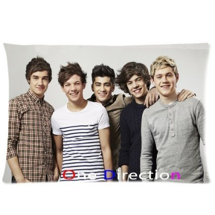 Hertanercase One Direction Custom Zippered Soft Pillow Cases 16x24 (Two sides) (One Direction Four Deluxe Vinyl compare prices)