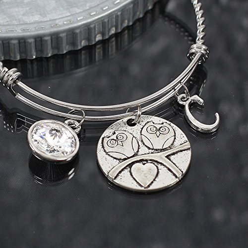 Owls in Love Expandable Stainless Steel Bangle Bracelet with Crystal and Initial (Initials Stainless Steel Bracelet)