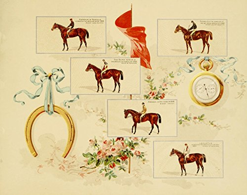 Album of Celebrated Racehorses 1888 Horseshoe & various Poster Print by Unknown (18 x 24) ()