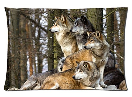 2015 New Cotton Bed Sofa Animal Wolves 50cmx75cm Pillowcase, Wild Grey White Wolf In The Jungle Soft Pillow Cover Pattern5 yuo-yuo
