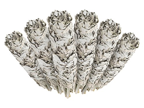 6 Pack - Premium California White Sage Smudge Sticks, Each Stick Approximately 4 Inches Long - Incense Garden Brand. Made in -