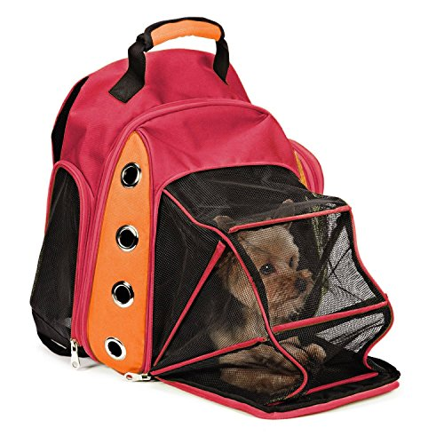 - EXPAWLORER Multiple Deluxe Dog Carrier Mesh Travel Backpack Double Shoulders Straps Bag for Small Pet Puppy Cat Wine Red (Renewed)