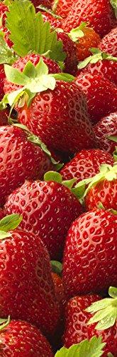 Plage Fresas Vinilo Adhesivo para la Cocina, Vinilo, Rojo, 60x180 cm