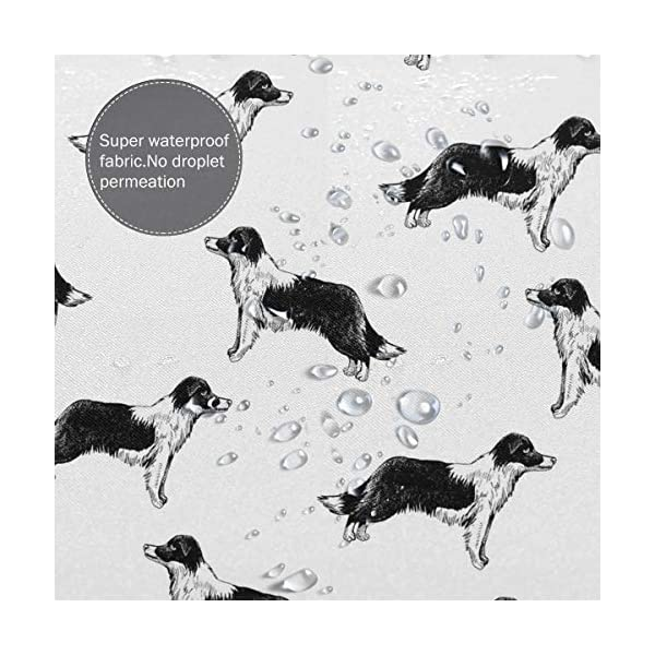 Border Collies Bathroom Shower Curtain Shower Printing Curtains Durable Polyester Bath Curtain Waterproof Bathroom Curtain with 7-12 Hooks 60x72 in 5
