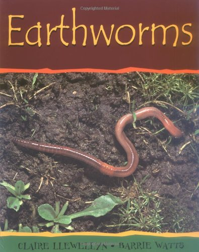 Earthworms (Minibeasts)