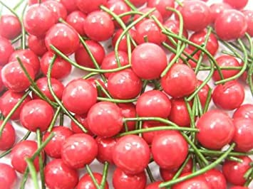 Dollhouse Miniature Size Cherries  Can