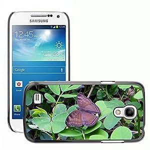 GoGoMobile Slim Protector Hard Shell Cover Case // M00124862 Common Baron Butterfly // Samsung Galaxy S4 Mini i9190