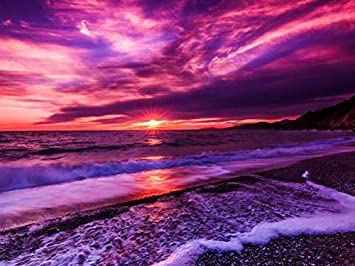 Image result for purple sunset pictures