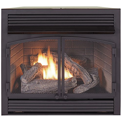 Duluth Forge Dual Fuel Vent Free Fireplace Insert - 32,000 BTU, Remote Control, (Propane Gas Direct Vent)