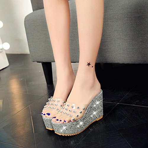 AIMTOPPY Women Shoes, Summer slope with slippers, high-heeled diamond transparent platform sponge waterproof platform sandals (US:6, Silver)