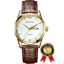 BRIGADA Swiss watches Classic Gold Waterproof Business Casual Quartz Watch for Men Boys, Great Gift for Someone or Yourself