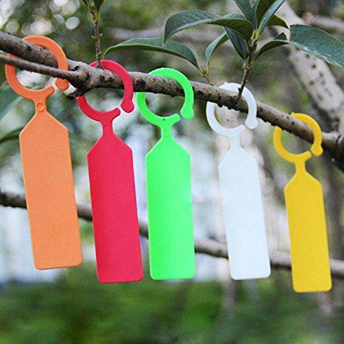 Lautechco 100pcs Hanging Plant Waterproof Tags Garden Flower Vegetable Planting Label Tools (Orange) by Lautechco® (Image #3)