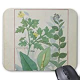 Blue-skys Greater Celandine Or Poppy Mouse Pad