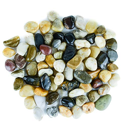 (Galashield River Rocks Polished Pebbles Decorative Stones Natural Aquarium Gravel (5 lb Bag))