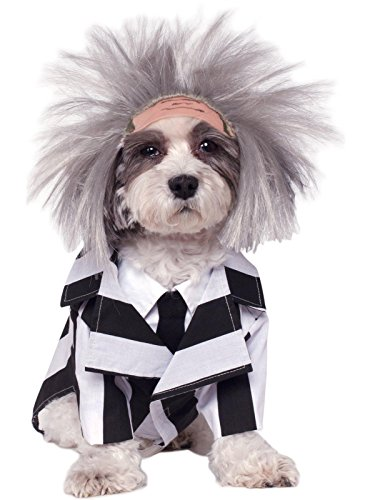 Rubie's Beetlejuice Pet Costume, Large -