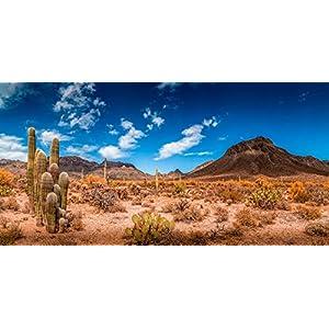 BannersNStands Reptile Habitat, Terrarium Background, Blue Sky with Mountains & Cactus - (Various Sizes) 50