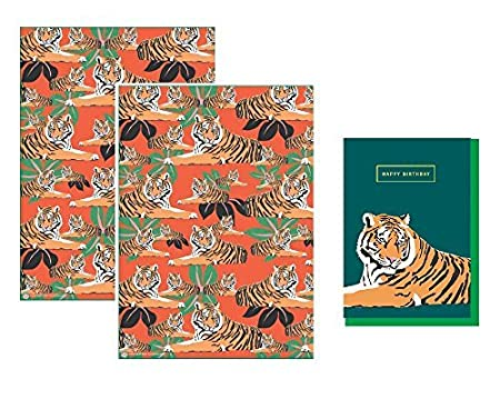 orange envelope! TIGER NEW BIRTHDAY CARD