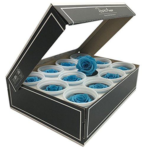 Preserved roses 12 pack small head roses color - Color Babyblue