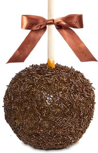 Chocolate Cocoa Sprinkle Caramel Apple Chocolate Covered Gourmet Apple