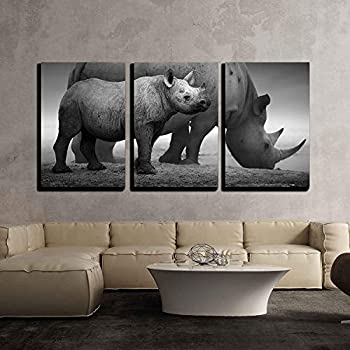 wall26 - 3 Piece Canvas Wall Art - Black Rhinoceros Calf (Diceros Bicornis) Standing with Cow at a Waterhole - Modern Home Decor Stretched and Framed Ready to Hang - 16