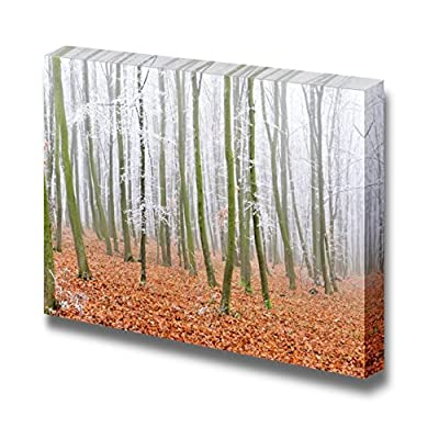 Charming Creative Design, Landscape of a Forest with Fog with Yellow Leaves, Quality Creation