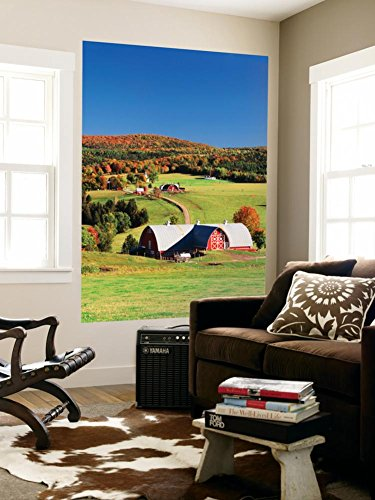 Barnet, View of Farm in Autumn, Northeast Kingdom, Vermont, USA Wall Mural by Walter Bibikow 48 x 72in
