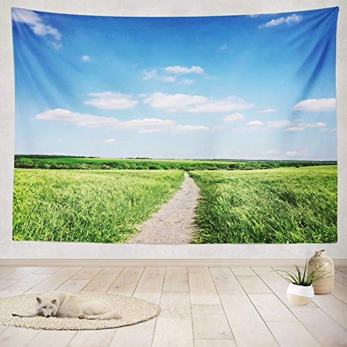 (ASOCO Tapestry Wall Handing Beautiful Summer Landscape Sky Blue Cloud Sunny Green Grass Road Field Light Wall Tapestry for Bedroom Living Room Tablecloth Dorm 50X60 Inches)