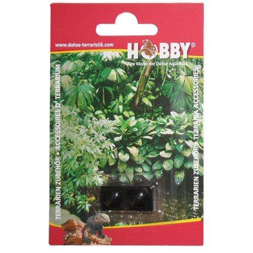 Botones para terrarios Ebristle, 10 mm, Negro, 2 unidades,: Amazon.es: Jardín