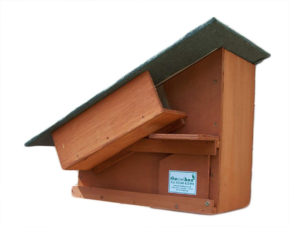 Little Owl Boxes (golden Brown)