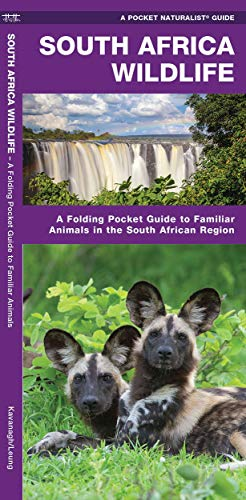 South Africa Wildlife: A Folding Pocket Guide to Familiar Animals in the South African Region (Wildlife and Nature Identification) (Types Of Wild Animals In South Africa)