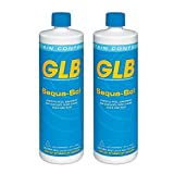 GLB 71016A-02 Sequa-Sol Sequestering Agent Pool Stain Preventer, 1-Quart, 2-Pack by GLB