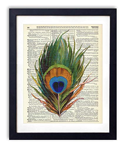 Peacock Feather Upcycled Vintage Dictionary Art Print 8x10