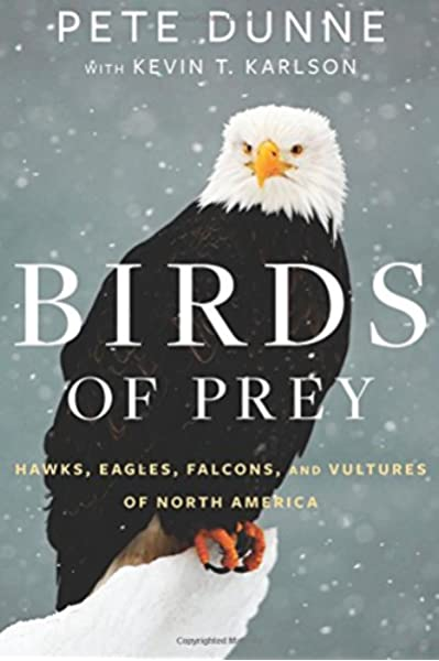 Birds Of Prey Hawks Eagles Falcons And Vultures Of North America Dunne Pete Karlson Kevin T 9780544018440 Amazon Com Books