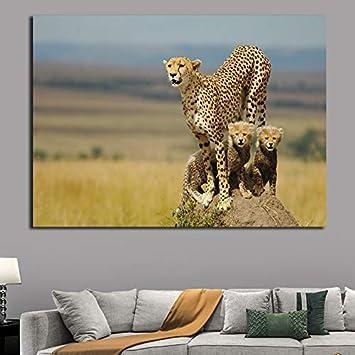 KWzEQ HD Impreso Guepardo Animal Lienzo Cartel Pintura Mural Imagen Cartel e impresión Arte,Pintura sin Marco,30x45cm