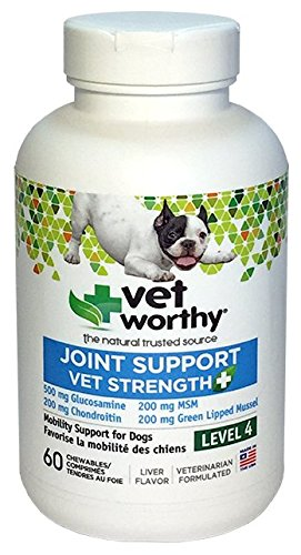 Vet Worthy Joint Support Level 4 Liver Flavored Chewables for Dogs (60 Count) ()
