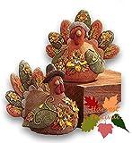 Fall Winter Autumn Thanksgiving Pumpkin Harvest Home Accent Decoration (Turkey Couple Figurines Set)