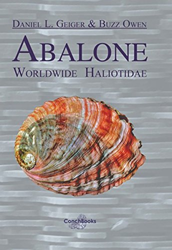 Abalone - Worldwide Haliotidae