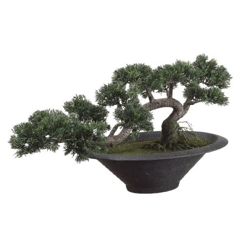 Silk Decor Trailing Cedar Bonsai Plant, Green