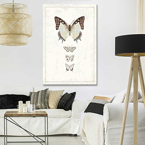 Hand Drawn Brown Butterfly Collection Series 2 Artwork