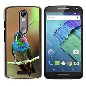 LECELL--Funda protectora / Cubierta / Piel For Motorola MOTO X3 3rd -- colibrí minúsculo lindo tropical exótica --