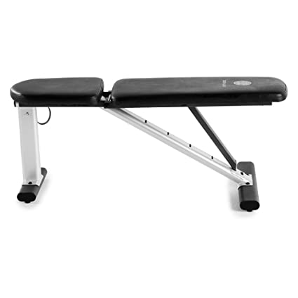 Amazon Com Golds Gym Xr 6 0 Utility Bench Sports Outdoors