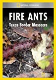 Fire Ants: Texas Border Massacre