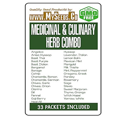 32 x Medicinal & Culinary Herbs Seeds COMBO KIT- from Angelica to Yarrow White Seeds - By MySeeds.Co (32 x Medicinal Herbs Kit) - Herb Bergamot