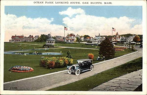 Leather Bluff (Ocean Park Looking South Oak Bluffs, Massachusetts Original Vintage Postcard)