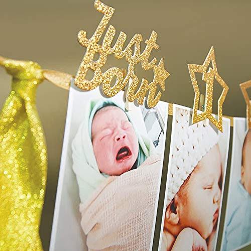 First Birthday Photo Banner First Birthday Decoration Great for One Year Old Celebration Party Supplies